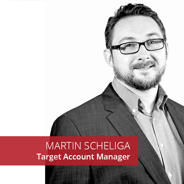 Martin Scheliga IT Management Consultant